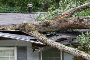 Roof repair caseyville il